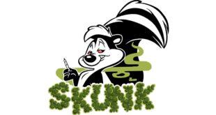 skunk, skank